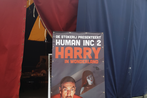 Catalijne zangeres theater, harry in Wonderland, Theaterfestival de Parade met Yorick Zwart